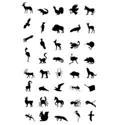World of animal vector