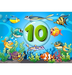 Flashcard number ten with 10 fish underwater vector image