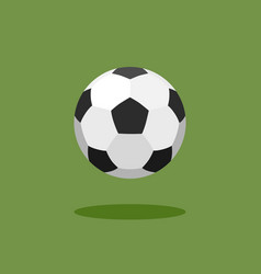 classic soccer ball on green background vector image vector image
