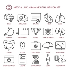 Medicine and human health line icons vector