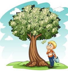 A money tree and a young boy vector image