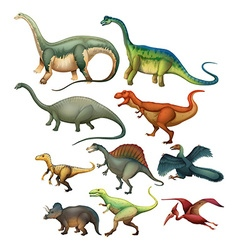 Different type of dinosaurs vector image
