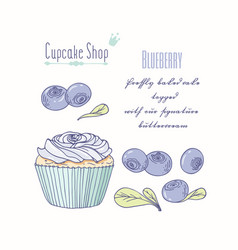 Hand drawn cupcake blueberry flavor vector