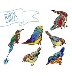 Sketch of birdset vector