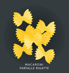 Traditional italian kitchen macaroni farfalle vector