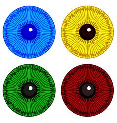eye iris set vector image vector image