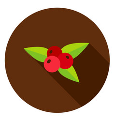 Rowanberry circle icon vector