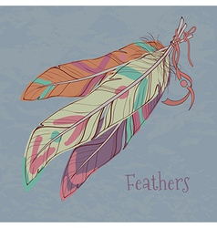 Ethnic decorative feathers vector