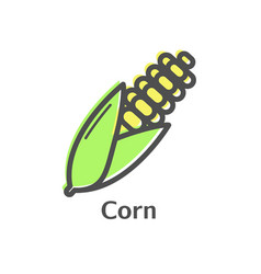 corn thin line icon isolated maize vegetables vector image