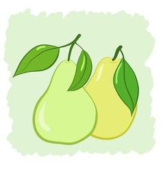 two pears with leaves vector image