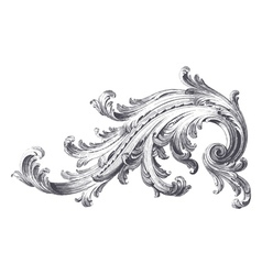Acanthus scroll vector
