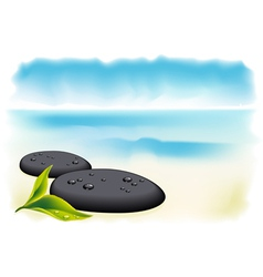 Black pebbles vector