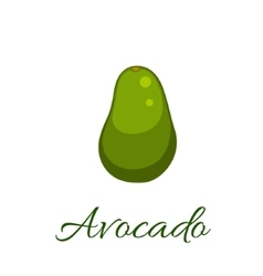 Avocado icon vector