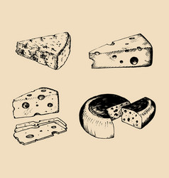 cheese set vintage hand drawn parmesan vector image vector image