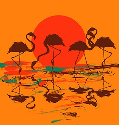 With flock of flamingos at sunset or sunrise vector