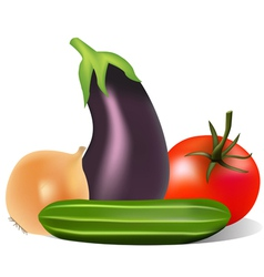 Still life with tomato onion cucumber eggplant vector
