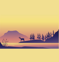 beauty scenery deer at the sunrise silhouette vector image