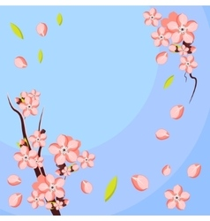 Almond or apricot flower branch template for vector
