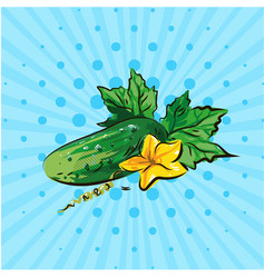 cucumber with yellow flower on a blue background vector image vector image