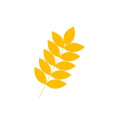 simple wheat symbol vector image