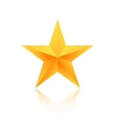 Realistic isolated gold star with reflection vector