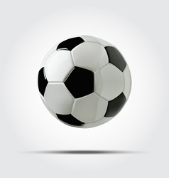 Realistic soccer ball or football ball on white vector