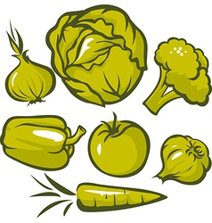 set of green vegetable vector image vector image