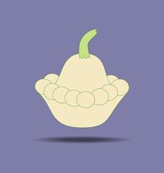 Squash vegetable icon vector
