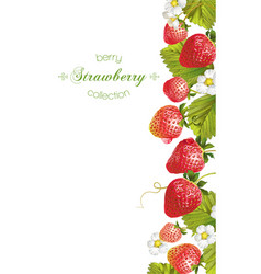 Strawberry vertical banner vector