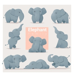 Set of Elephant family vector image