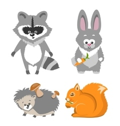 Cute animal squrrel hedgehog racconn hare vector