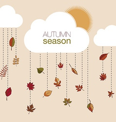 Set of autumn leaves for your design vector