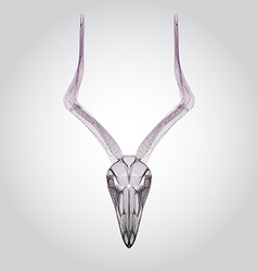 Wireframe goat skull head vector