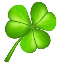 Three leaf clover vector image