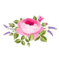 wedding flowers bouquet vector image vector image