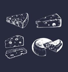 cheese set vintage hand drawn parmesan vector image