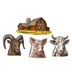 Farm animals set Pig cow and goat heads isolated vector image