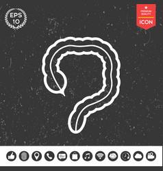 human organ - the large intestine icon vector image