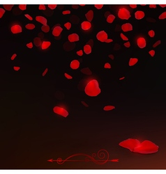 Red rose petals vector