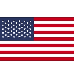 Usa flag image vector