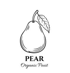 Hand drawn pear icon vector