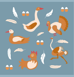 Poultry farm banner vector