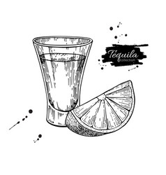 Tequila shot glass with lime mexican alcohol vector