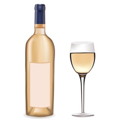bottle of white wine and a win vector image vector image