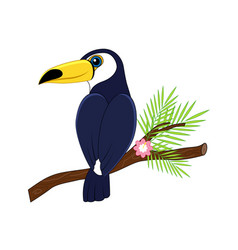 cute cartoon toucan vector image
