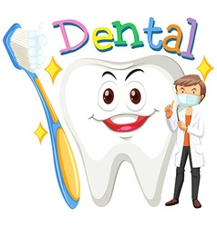 Dentist and clean tooth vector image vector image