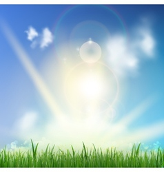 Background With Green Grass vector image