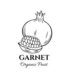 hand drawn garnet icon vector image vector image