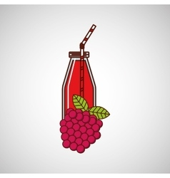 Juice fruit design vector