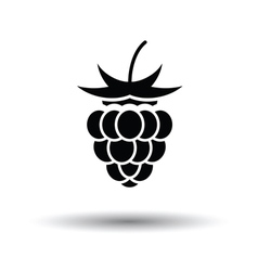 Raspberry icon vector image vector image